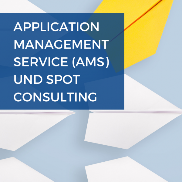 SAP Application Change Management und Spot Consulting WIAG